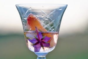 A crystal wine glass half full of campari cocktail with a couple flowers inside.