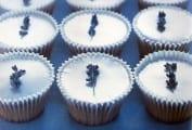 Lavender Trust Cupcakes