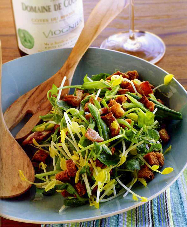 Pea Shoot, Bacon, and Pecorino Salad Recipe