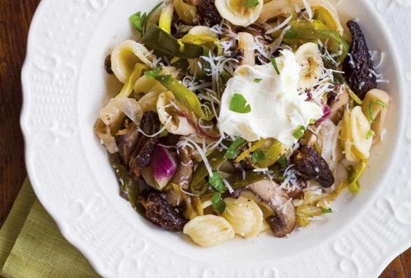Two white ceramic bowls filled with orecchiette with morel mushrooms and ramps and a dollop of mascarpone.
