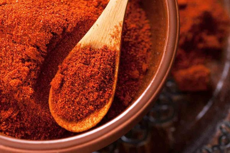 A bowl filled with paprika with a small wooden spoon resting inside.