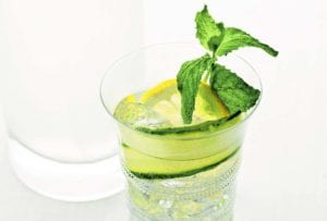 A glass of lemon cucumber cocktail with a sprig of mint, a lemon wheel, and a slice of cucumber.