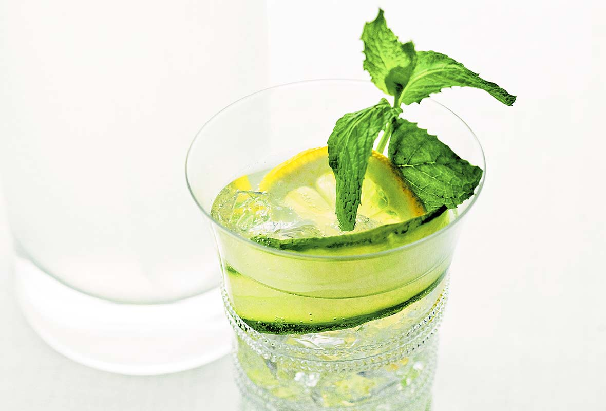 A glass of lemon-cucumber cocktail with a sprig of mint, a lemon wheel, and a slice of cucumber.