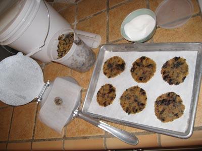 Lemon Olive Cookies