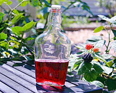 Reader's Blackberry Lavender Vinegar