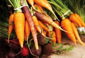 Fresh Carrots and Beets