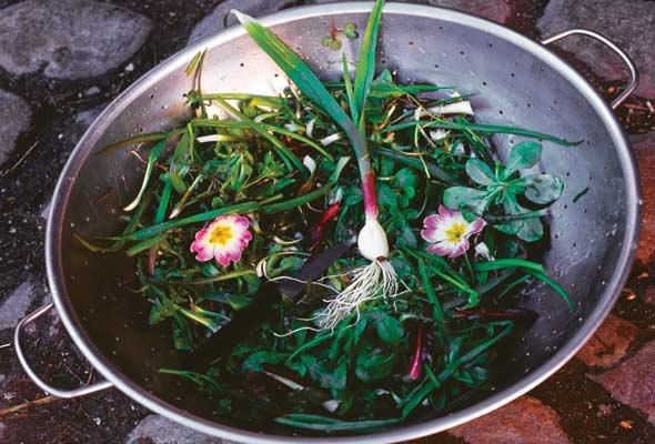 Seven Greens Salad