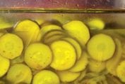 Pickled Zucchini