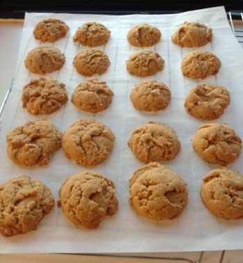 Peanut Butter Sandies Recipe