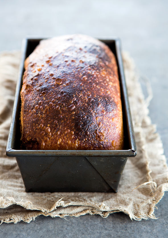 A browned loaf of homemade sandwich bread in a metal loaf tin.