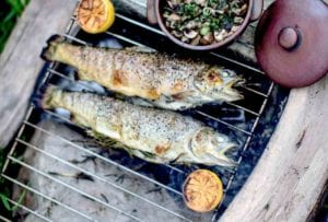 Two whole grilled trout, stuffed with rosemary on a grill over open coals with a dish of mushrooms and a couple halved lemons on the side.