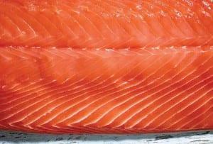 A raw salmon fillet.