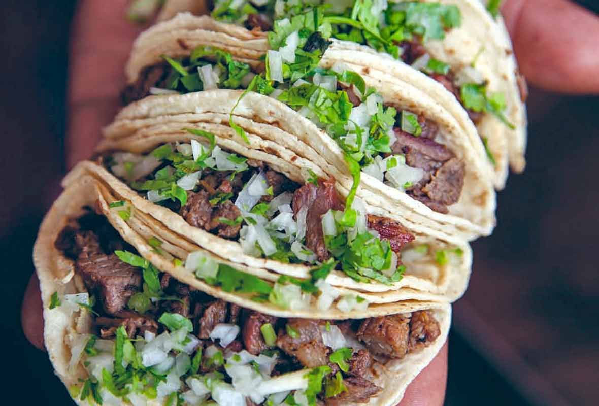 Man's hand holding four beef tongue tacos, or taquitos de lengua, filled with cubed meat, onions, cilantro