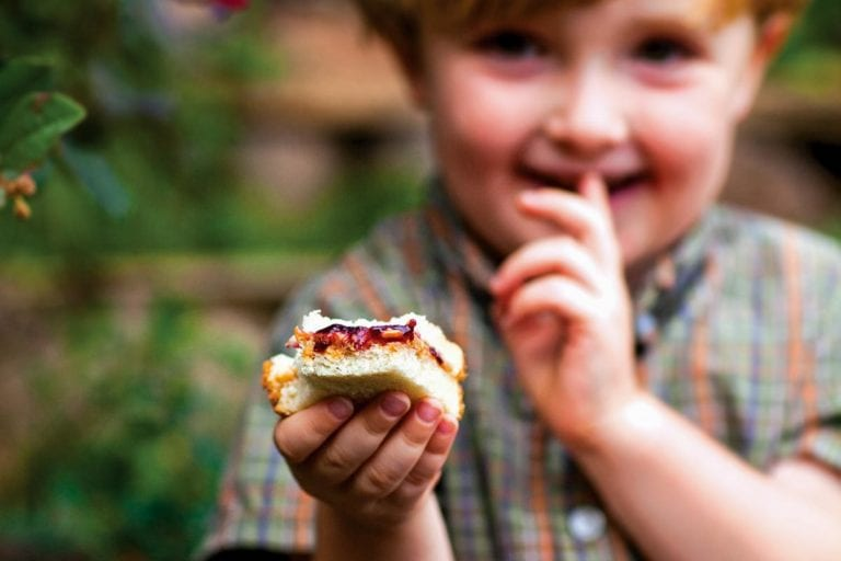 A small boy holding a partially eaten peanut butter and concord grape jam sandwich.