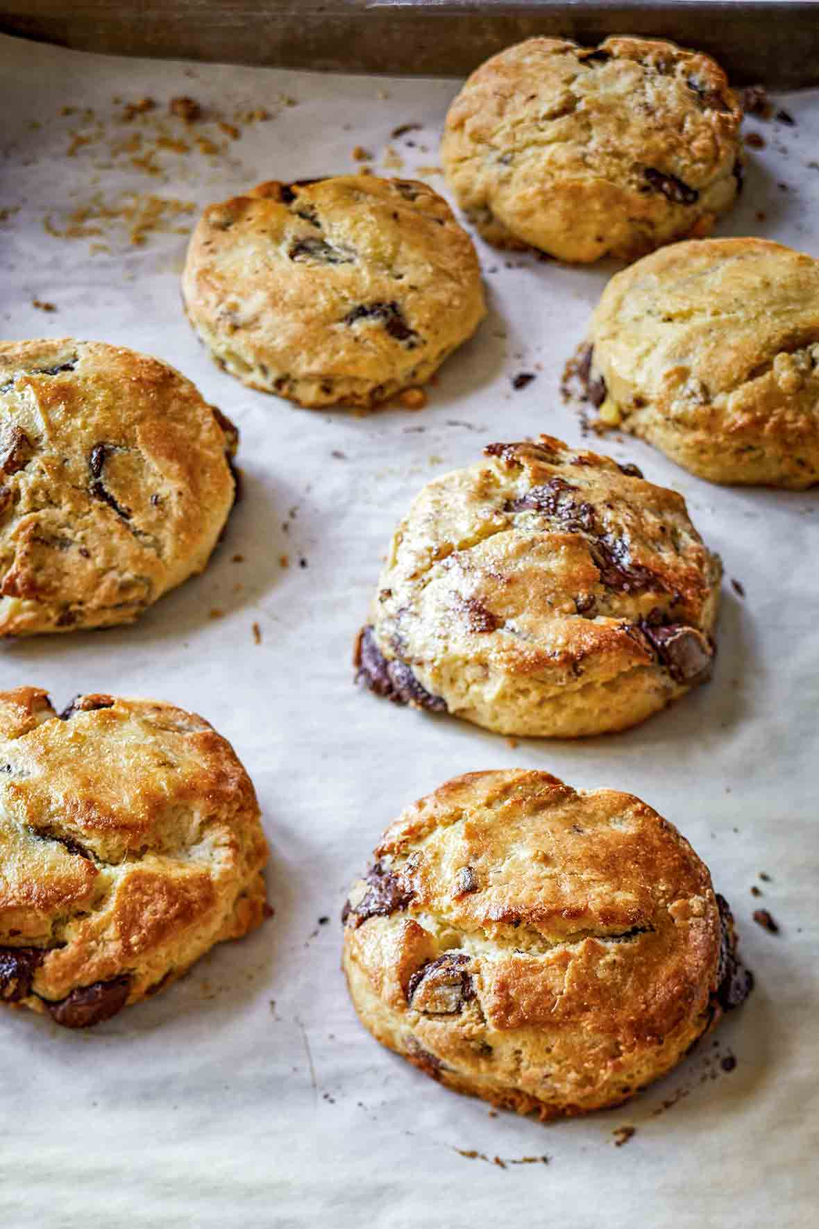 A baking sheet with seven chocolate pecan scones
