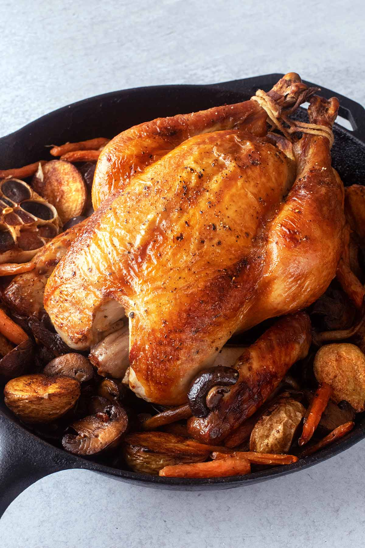 A better brined roast chicken in a cast iron Dutch oven surrounded by potatoes, mushrooms, carrots, and a halved head of garlic.