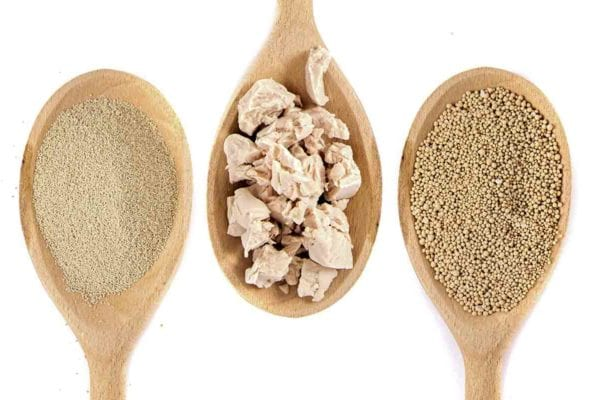 Three wooden spoons, each with a different type of yeast for the post discussing 'what is the difference between yeasts?'
