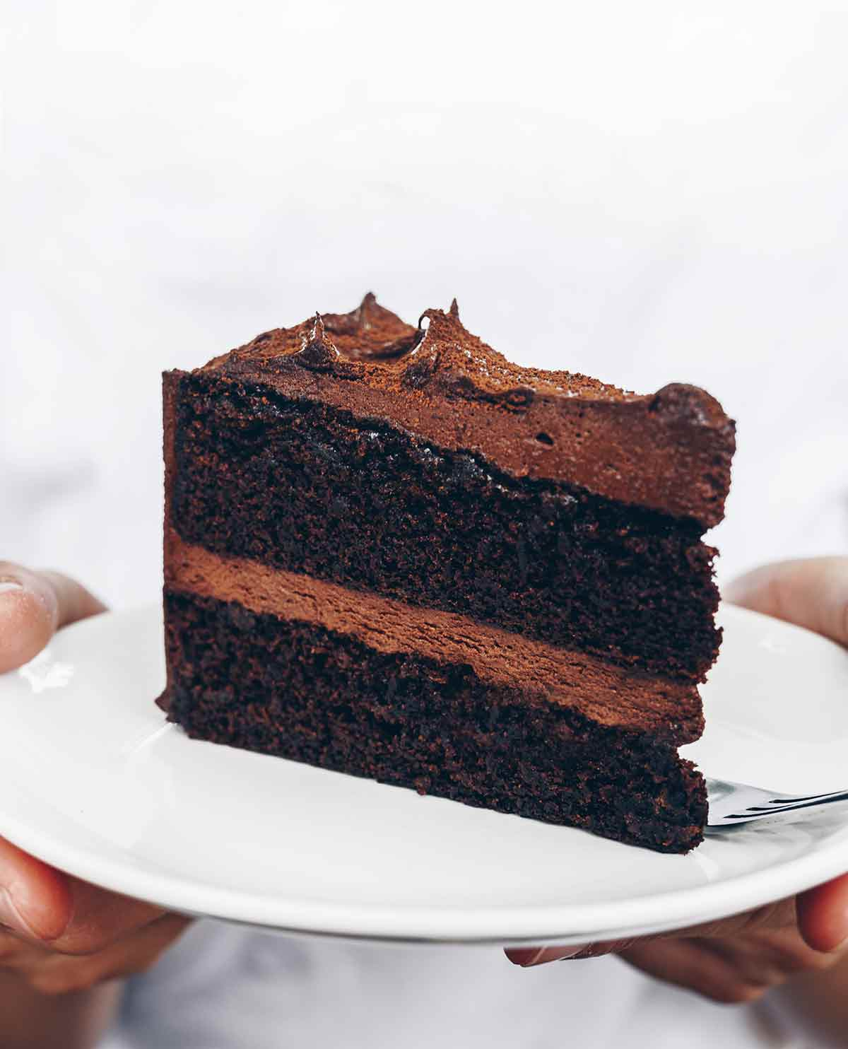 A person holding a plate with a slice of basic chocolate cake on it.