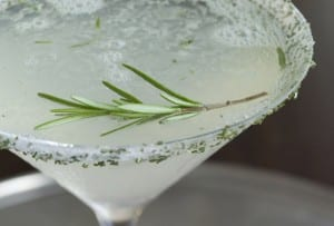 A martini glass filled with rosemary lemon drop with a sugared rosemary rim.